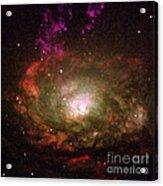 Circinus Galaxy Acrylic Print