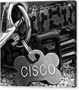 Cisco's Acrylic Print