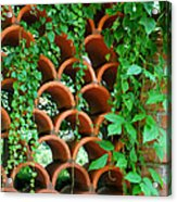 Clay Pattern Wall With Vines Acrylic Print