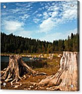 Clear Lake Oregon Acrylic Print