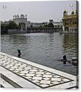 Clearing The Sarovar Inside The Golden Temple Resorvoir Acrylic Print
