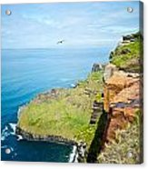 Cliff Of Moher 22 Acrylic Print