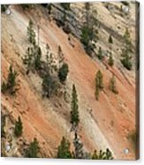 Cliff Side Grand Canyon Colors Vertical Acrylic Print