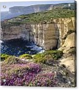 Cliffs Along Ocean With Wildflowers Acrylic Print