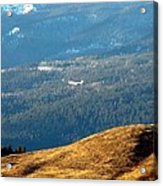 Climbing Skyward Acrylic Print by Will Borden