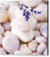 Close Up Of Lavender On Pebble Stones, Studio Shot Acrylic Print