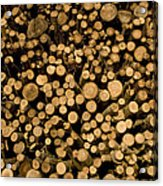 Close View Of Freshcut Wood Waiting Acrylic Print