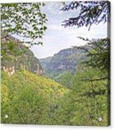 Cloudland Canyon Acrylic Print