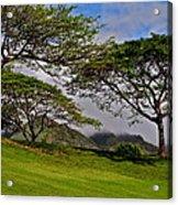 Clouds And Kiawe Acrylic Print