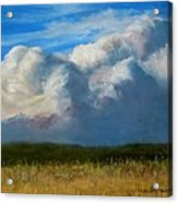 Clouds Over The Meadow Acrylic Print by Jack Skinner