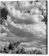 Clouds Rising Bw Palm Springs Acrylic Print