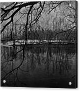 Clover Pond Acrylic Print