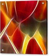 Cluisiana Tulips Triptych Panel 3 Acrylic Print