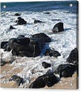 Coastal Rock Garden 2 Acrylic Print