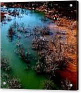 Gobbler Creek Acrylic Print