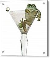 Cocktail Frog Acrylic Print