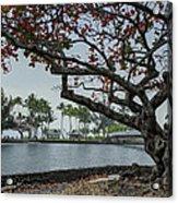 Coconut Island In Hilo Bay Hawaii Acrylic Print