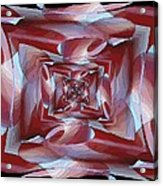 Cocoon Acrylic Print by Tim Allen