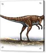 Coelophysis Bauri, A Prehistoric Era Acrylic Print
