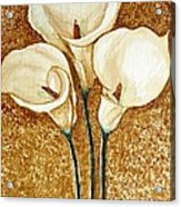 Coffee Painting - Flowers Acrylic Print by Rejeena Niaz