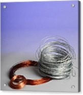 Coiled Wires Acrylic Print