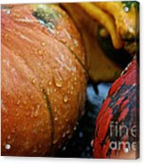 Cold And Wet Acrylic Print