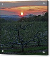 Cold Spring Orchard Acrylic Print