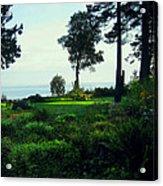 Colette's Garden Acrylic Print by Ric Soulen