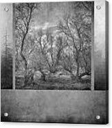 Collage Misty Trees Acrylic Print