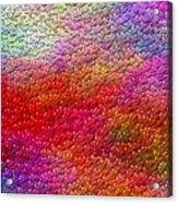 Color Hearts 1c Acrylic Print