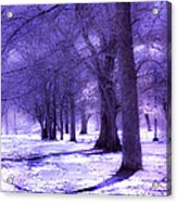 Color Infrared Winter Landscape Acrylic Print