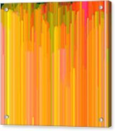 Color Tones 2  Acrylic Print