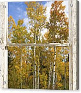 Colorado Autumn Aspens Picture Window View Acrylic Print