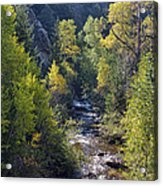 Colorado Left Hand Creek Boulder County Autumn View Acrylic Print