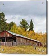 Colorado Rustic Autumn High Country Barn Acrylic Print