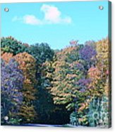 Colored Trees Acrylic Print