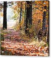 Colorful Autumn Landscape Acrylic Print