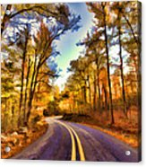 Colorful Bend Acrylic Print by Douglas Barnard
