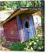 Colorful Birdie House Acrylic Print