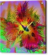 Colorful Hibiscus Acrylic Print by Doris Wood