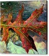 Colorful Oak Acrylic Print