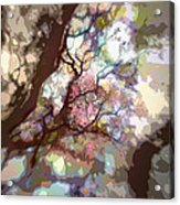 Colorful Tree Acrylic Print