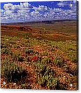 Colorful Valley From Fossil Lake Trailsil Bu Acrylic Print