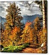 Colori D'autunno Acrylic Print