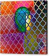 Colors Hiding Behind Fence Acrylic Print