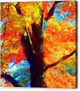 Colors Of Autumn Acrylic Print
