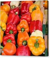 Colourful Peppers Acrylic Print
