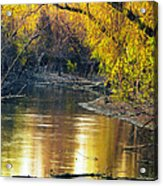 Columbia Bottoms Slough II Acrylic Print