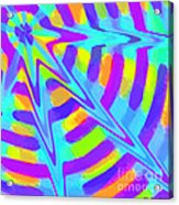 Comet Acrylic Print
