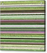Comfortable Stripes Lv Acrylic Print
